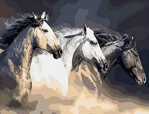 Drie paarden Paint by Numbers Kits Diy Olieverfschilderij voor kinderen Studenten Volwassenen Beginner Met borstels en acryl Pigment 16X20 inch Frameloos