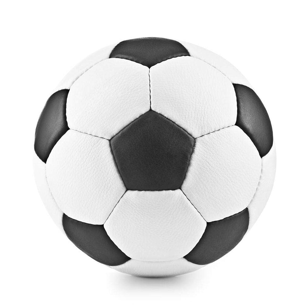 達成可能制限された調停者Wcup サッカーボール 検定球 4号(小学生用) 5号(大人用) 2号(ベビー用) 3号(幼児用)