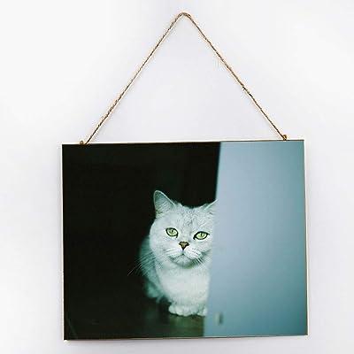 prz0vprz0v Señal para Amantes de los Gatos, Letrero para Puerta ...