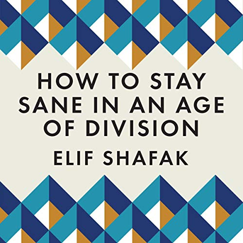 Couverture de How to Stay Sane in an Age of Division