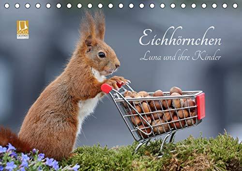 Eichhörnchen Luna und ihre Kinder (Tischkalender 2021 DIN A5 quer)