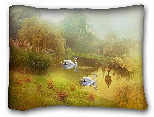 Decorative estándar funda de almohada animales aves animales National Geographic ramas brasileño tucanes pájaros 20