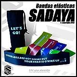 Sadaya - Bandas Elasticas Fitness/Bandas de Resistencia/Resistence Loop Bands, eBook en Español y...