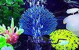 PULABO Simulación luminosa de árbol de hierro marino fluorescente acuario, paisajismo, decoración de acuario, planta de coral artificial, cómoda y respetuosa con el medio ambiente.