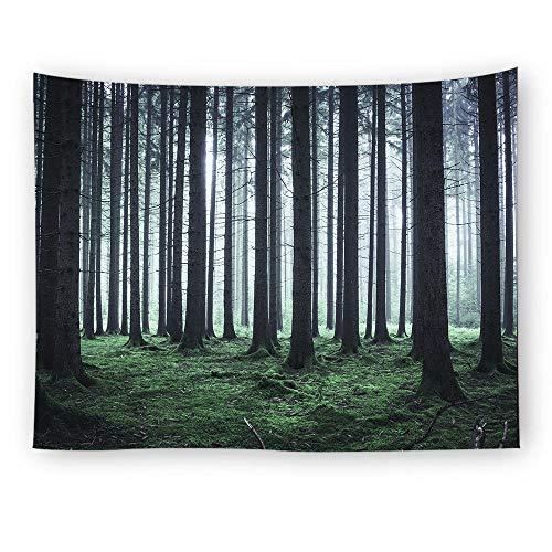 Alayth Wandtapijt, wandtapijt, polyestervezel, comfortabel, milieuvriendelijk, niet-giftige wooncultuur 150X100cm