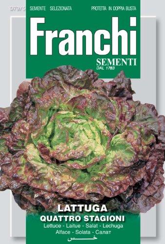 Seeds of Italy Franchi Graines de laitue Merveille des Quatre Saisons