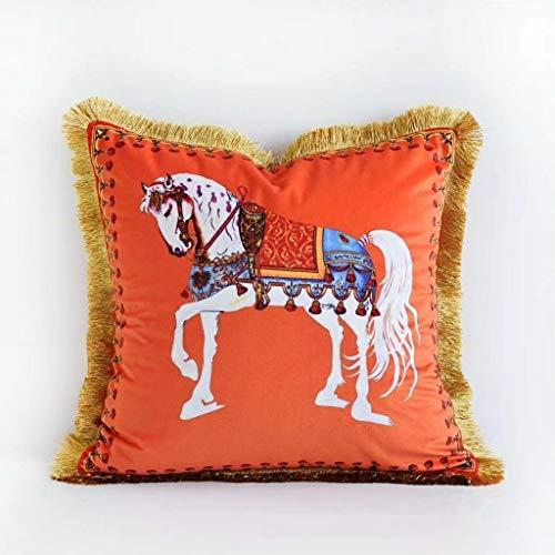 WLYX Super Suave Terciopelo Cojines del sofá, Chunma Doble Cara Impresa del sofá Fundas de Almohadas, Cojines Dormitorio Borla (Color : C, Size : 45 * 45CM)