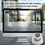 Zoom IMG-1 telecamera dome dericam 1080p 1920tvl