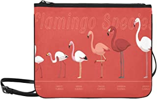 Bird Flamingo Species Set Cartoon Vector Illustrat Pattern Custom High-grade Nylon Slim Clutch Bag Cross-body Bag Shoulder Bag
