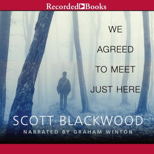We Agreed to Meet Just Here audiobook cover art