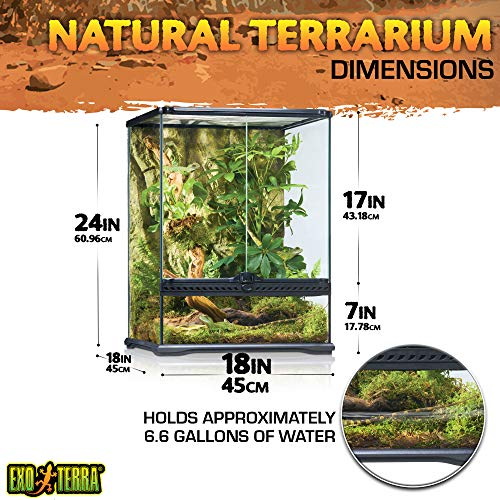 Exo Terra Terraristik Starter Set Regenwald-Terrarium, mittelgroß - 3