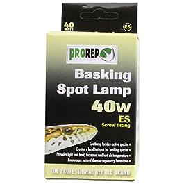 ProRep Basking Spot Lamps ES