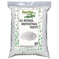 Horticultural Perlite 1 Quart Bag
