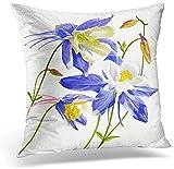 GFGKKGJFF Kissenbezüge mit DREI blauen Columbine Blüten Aquarell Gemälde Blumen schöne Leinwand 45,7 x 45,7 cm Wohnzimmerdeko Überwurf Kissenbezug für Sofa