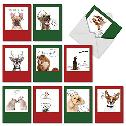 10 Assorted Christmas Dogs and Doodles Christmas Cards with Envelopes 4 x 5.12 inch, Holiday Greeting Cards, Stationery with Whimsical Photos of Dogs and Fun Doodles M6582XSG