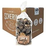 Scherini Valtellina - Caja de setas Shiitake secos (100 g x 12).
