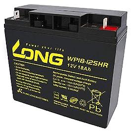 WSB Batterie 18 Ah 12 V AGM au plomb pour tondeuse à gazon, tracteur-tondeuse autoportée 17 Ah 19 Ah 20 Ah 22 Ah 23 Ah
