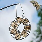 Alimentador de pájaros con bola de grasa circular para colg
