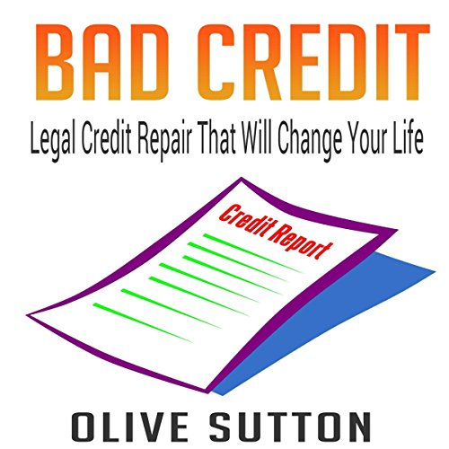 Bad Credit audiobook cover art