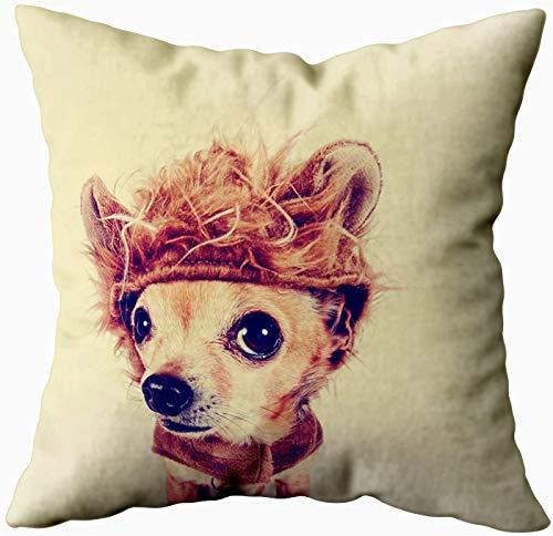 Art Funda de almohada, diseño de león con filtro retro vintage Chihuahua Instagram de 50 x 50 cm, fundas de almohada para decoración del hogar, fundas de almohada con cremallera para sofá