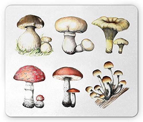 Alfombrilla de ratón de hongo, patrón de hongo dibujado a mano Amanita Muscaria Boletus Champignon Ilustración retro, alfombrilla de ratón de goma antideslizante de tamaño estándar rectangular, multic