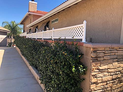 """SnapFence 16"""" x 24ft. Privacy Screen Fence Topper / Wall Topper Kit / Fence Extender / Wall Height Extender"""