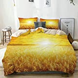 Juego de funda nórdica beige, puesta de sol sobre campo de trigo, paisaje rural idílico de verano, juego de cama decorativo de 3 piezas con 2 fundas de almohada, fácil cuidado, antialérgico, suave, su