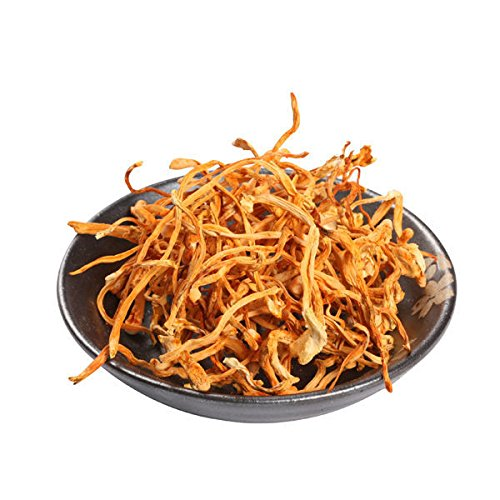 Cordyceps - Dried Cultivated Cordyceps By Nature Tea (04 oz)