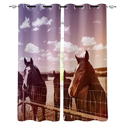 MXYHDZ Cortinas Salón Opacas - Cielo azul nubes blancas animales caballos. - Impresión 3D Aislantes de Frío y Calor 90% Opacas Cortinas - 220 x 215 cm - Salon Cocina Habitacion Niño Moderna Decorativa