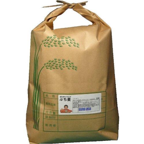 ぷち麦10Kg 福岡県産裸麦使用