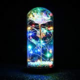 FTPRO Galaxy Rose in Glass Dome with Lights Infinity Rose Flower Shines Like a Enchanted Glass Rose Best Gifts for Women Valentine's Day Beauty and The Beast Rose