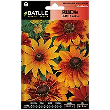Semillas de Flores - Verdolaga doble variada - Batlle: Amazon.es ...