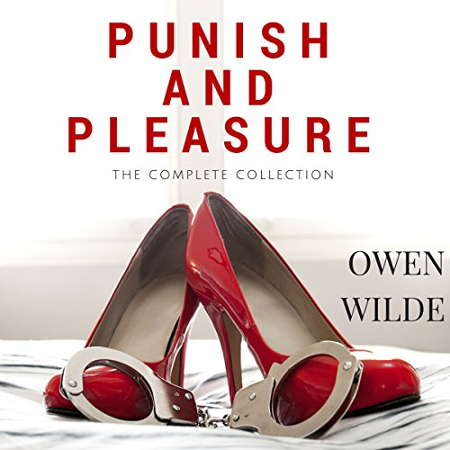 Punish and Pleasure audiobook cover art