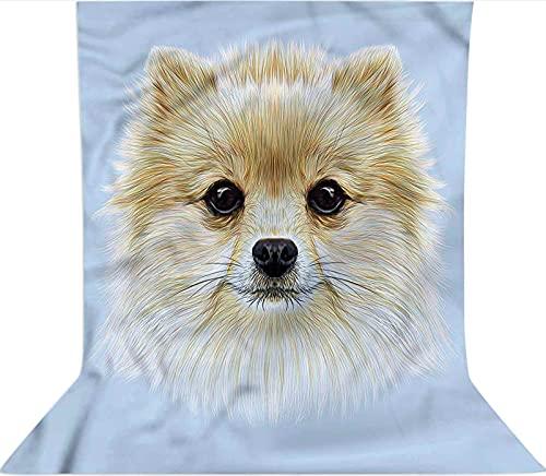 Fondo para fotografía de 3 x 3,6 m, diseño de pomerania, para decoración de perro, telón de fondo de tela de microfibra, plegable de alta densidad para fotografía de vídeo y televisión