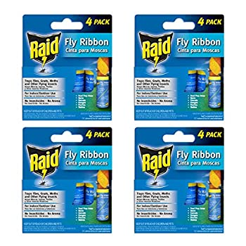 Best fly ribbon Reviews
