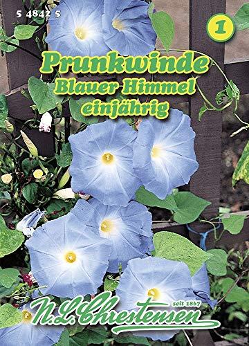 N.L. Chrestensen 548425 Prunkwinde Blauer Himmel (Prunkwindensamen)