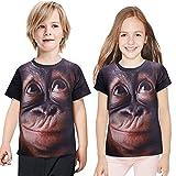 ANUFER Unisex Adulto Ragazzo novità Stampa Digitale 3D Gorilla Maglietta Manica Corta Tops Blouse T-Shirt caffè Bambini SN07612 5 Anni