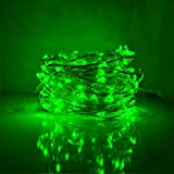 Bynlna Outdoor Light Strings LED Copper Wire Lights, Each Set 33ft/10M 100LEDs and 1 Remote Control.AA Battery Powered,Decor Rope Lights for Holiday,Wedding, Parties.(Green one)