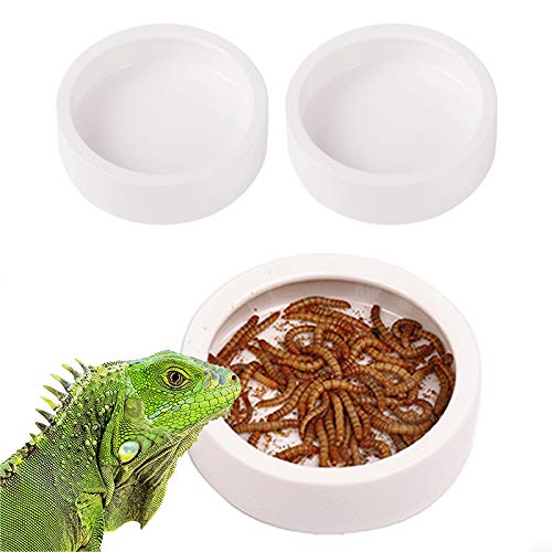 Reptiles Bowls That Keep Flowing Water Cold