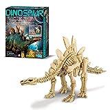 Dino szkielety Stegosaurus -