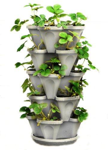 5 Tier Stackable Strawberry, Herb, Flower, and Vegetable Planter - Vertical Garden Indoor/Outdoor