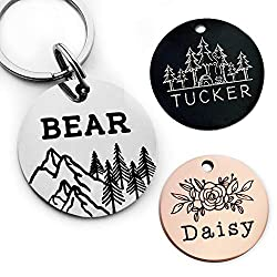 10 Best Dog Id Tags