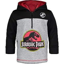 4. Jurassic Park Logo Boy's Dinosaur Hoodie