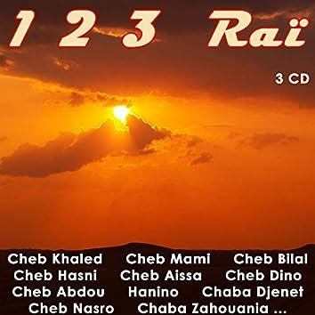 123 Raï, Vol 2 of 3