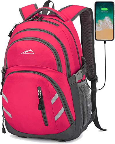 Backpack Bookbag for School Student College Business Travel with USB Charging Port Fit Laptop Up to 15.6 Inch Night Light Reflective Anti Theft (Pink)