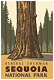 Sequoia National Park General Sherman Giclee Art Print Poster from Travel Artwork by Artist Paul A. Lanquist 12' x 18'