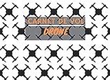 Carnet de Vol Drone: Carnet de vol à remplir pour pilote de drone - Journal de bord pour noter les caractéristiques de vos drones et de leurs ... de vol - 112 pages - Format 21 x 15,2 cm