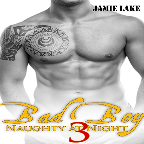 Bad Boy: Naughty at Night 3 cover art