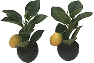 Artificial Plants Fake Potted Lemon Tree Simulation Green Plant Indoor Decoration in Black Pot Set of 2