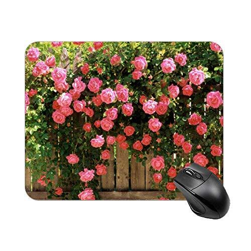 Rosa Rose Zaun Mauspad